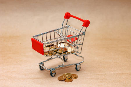 Concept of spending on purchases. Image of cart and money Reklamní fotografie
