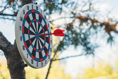 Success concept. Image of Dart hit the bulls eye Reklamní fotografie