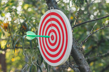 Success concept. Photo of Dart hit the bulls eye Reklamní fotografie