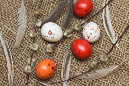 Sweet Easter. Image of chocolate eggs with willow Reklamní fotografie