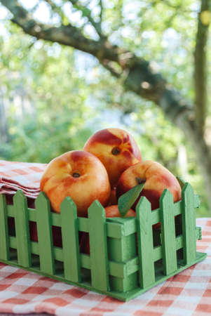 Food. Vertical photo of nectarines in box in the garden