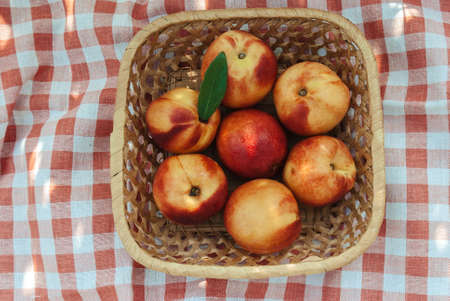 Top view of nectarines in basket on checkered tablecloth Reklamní fotografie - 128032050