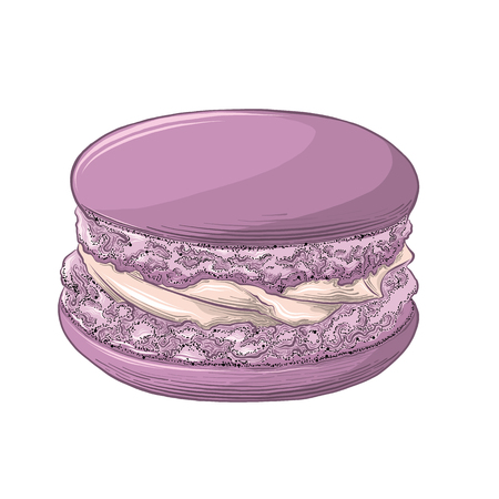 Hand drawn sketch of violet macaron in color isolated on white background. Detailed drawing, for posters, decoration and print. Vector illustration. Illustration