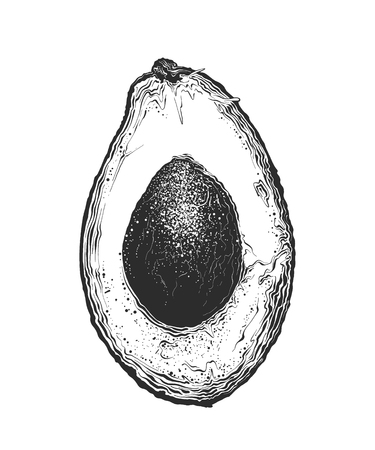 Hand drawn sketch of half avocado in black color. Isolated on white background. Drawing for posters, decoration and print. Vector illustration.