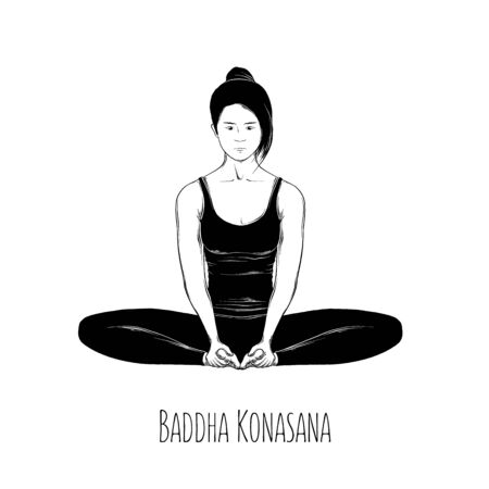 Vector illustration yoga pose Baddha Konasana. Girl does yoga exercises - vector