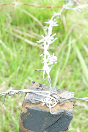 barbed wire for shooting and hunting practice sites