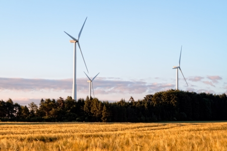 Wind Power Stations in a Corn Field, Bavaria Germany photo