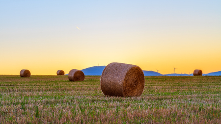 Lovely Hay Bales in Autumn October in the beautiful morning sunlight in Bavaria, Germany near a medieval Castle Ruin photo