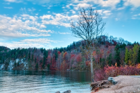 ludwig: Alpsee in Fall, sea in Hohenschwangau near Munich in Bavaria, Germany