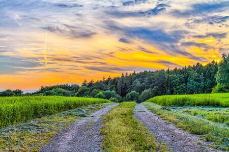 Fantastic Franconian Spring Landscape in Germany  Beautiful Road in the forrest hills of northern Bavaria at sunset  Fresh Deciduous Forest Scenery Standard-Bild