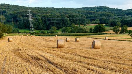 campagne rural: Idyllique bavaroise espace rural Paysage d'�t� en Haute-Franconie, Allemagne