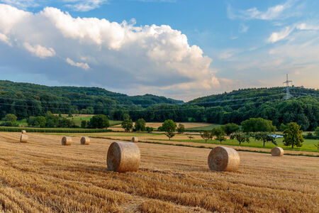 campagne rural: Idyllique bavaroise espace rural Paysage d'�t� en Haute-Franconie, Allemagne.