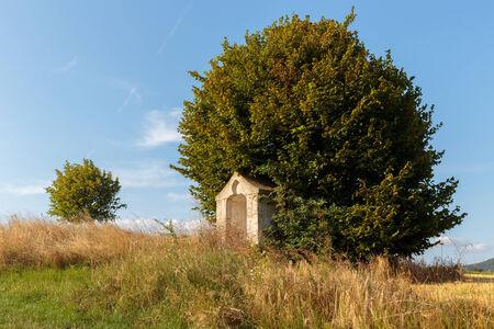 rural countryside: Idyllic Bavarian Rural Countryside Summer Landscape