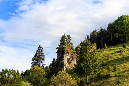 juniper tree: Fantastic Bavarian Landscape Panorama. Juniper tree Slopes in Kleinziegenfeld Valley in Germany. Lovely green colors on the hills Stock Photo