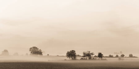 Foggy Morning Sunrise in Bavaria. Fog on the Ground. Late September Trees. Picuresque and Moody Atmosphere. Black and White with Sepia Tone photo