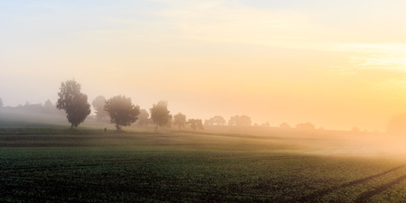 Foggy Morning Sunrise in Bavaria. Fog on the Ground. Late September Colors and Trees. Picuresque and Moody Atmosphere photo