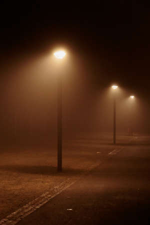street lights: Street Lights in the Fog at Lake Constance