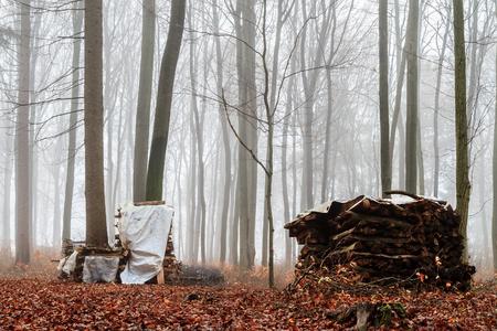 foggy november landscape in Bavaria, Germany