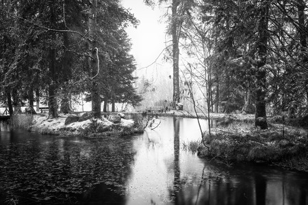 Idllic Winter Park. Vintage Black and White. Romantic Loneliness. Heavy snowing photo