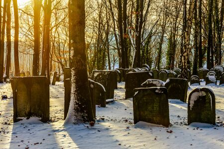 trecking: Old Bavarian Jewish Forest Graveyard in Germany. Winter Sunset in the rural countryside with long shadows and deep sun