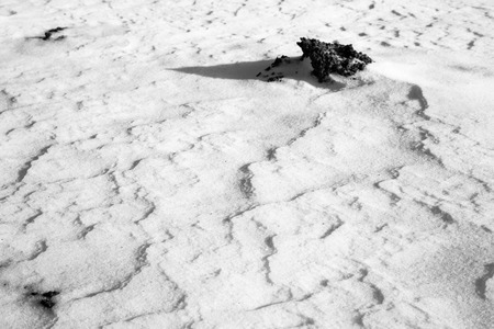 powdery: Sand Like Texture in the powdery snow looking like waves. Stock Photo