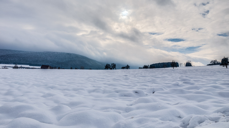 Cold snowy winter wonderland in the Black Forrest Region of Germany. Sweet Solitude. White and Lonely Landscape photo