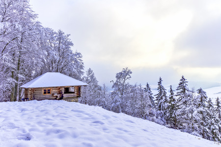 snowed: Cabin in the Woods. Old wooden Hut in the snowy winter woods of the black forest in Germany. Amazing snowed in trees and hill landscape Stock Photo