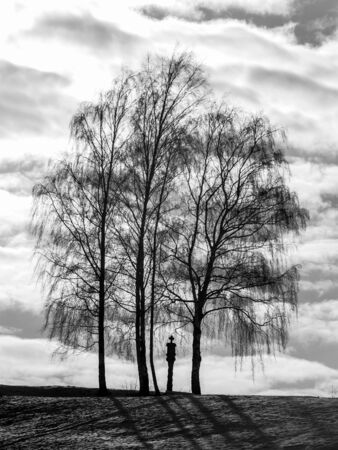 jura: Lonely Winter Tree. Sweet Solitude. Cold and Cloudy day with much snow in the franconian Jura region of Bavaria Stock Photo