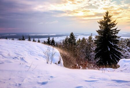 jura: Cold snowy winter wonderland in the hills of the franconian Jura Region of Germany. Sweet Solitude. Cold and Lonely Landscape. Fantastic Light