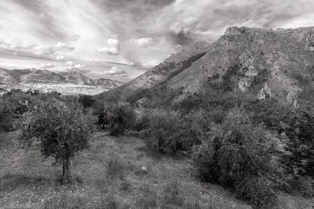 palermo   italy: Captivating Sicilian Subtropical Fall Landscape south og Palermo, Italy Stock Photo