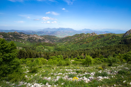 mediterranean forest: Forest Hills of Ficuzza on Sicily. Lovely spring Forest landscape in the woodlands of the mediterranean island. Lovely green picturesque and vibrant colors. Rocks, hills and a great view