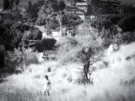 Autunno in Sicilia in bianco e nero. Natura fuori Palermo in Italia Archivio Fotografico - 88060940