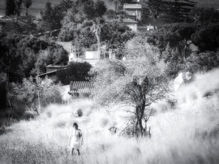 Herfst in Sicilië in zwart-wit. De natuur buiten Palermo in Italië