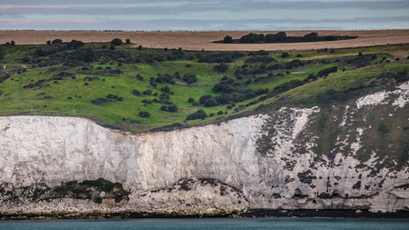 Famous White Cliffs of Dover with Meadow on Top on the Island of Great Britain Standard-Bild