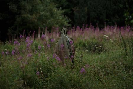 Old rotten gravestone in Wales, Great Britain Reklamní fotografie