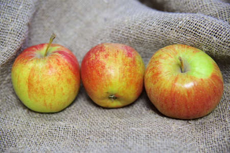 the apples on the background of the canvas. Stock Photo
