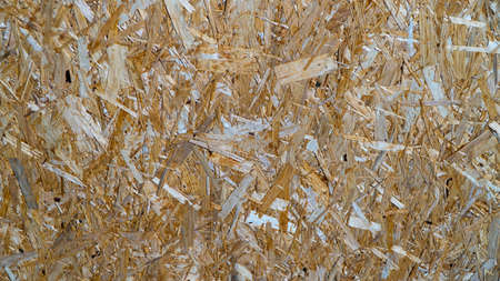 background of wood sawdust and pieces of wood.