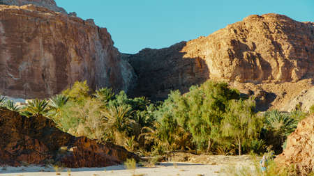 Egypt texture colored canyon in Sunny weather.