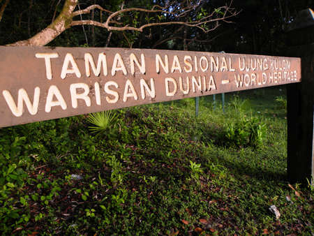 national plant: UJUNG KULON NATIONAL PARK