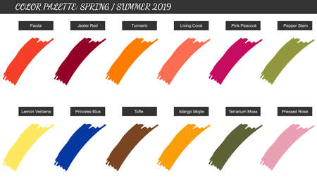 Color palette spring summer 2019. Samples of trendy colors next year. Vector illustration