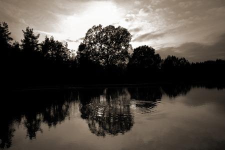 cheerfull: German lake in Sepia