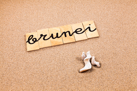 appoints: Words FORMED from small pieces of wood container containing a sun and beach tourist destination Brunei