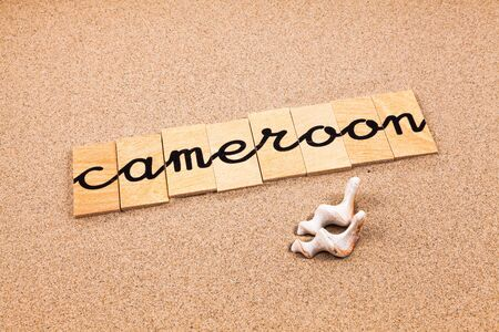 appoints: Words FORMED from small pieces of wood container containing different letters Cameroon