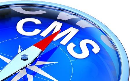 web side: CMS