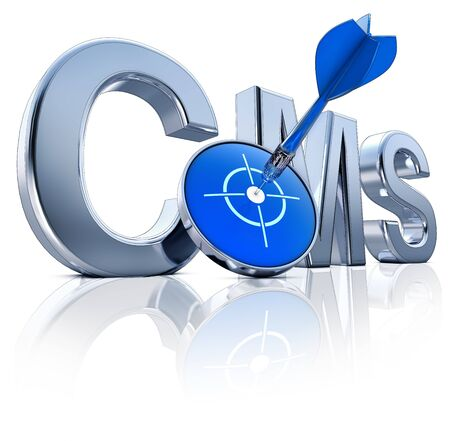 CMS icon Stock Photo - 22073568