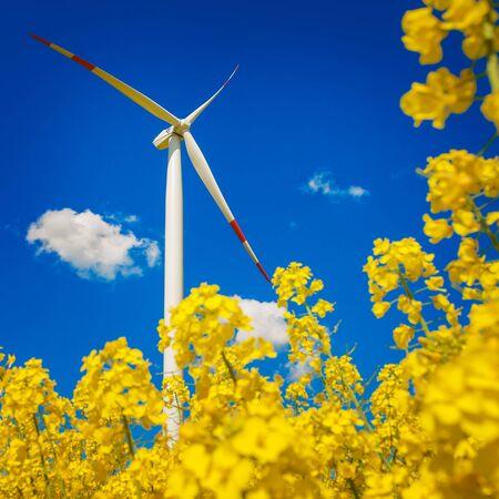 warmness: Green Energy Stock Photo