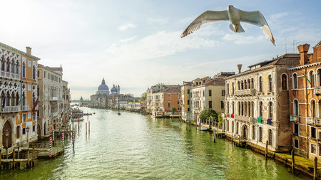 Early morning at Grand Canal in Venice, Italy
