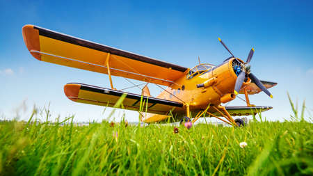 historical airplane on a meadow