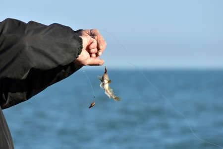 The man took the fish to the fishing pole and held it in his hands trying to free it from the hook.