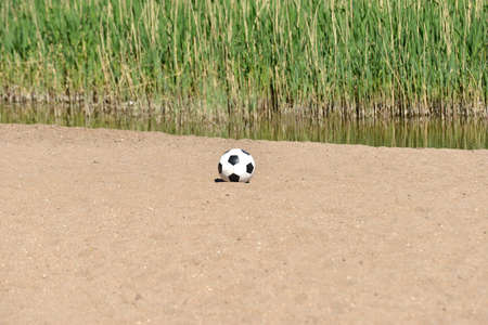A soccer ball lies on the sand near a pond with plants